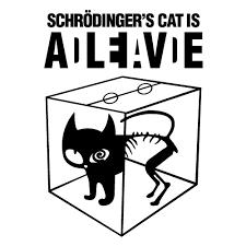 schrödinger'in kedisi, paralel evren ve müzeyyen